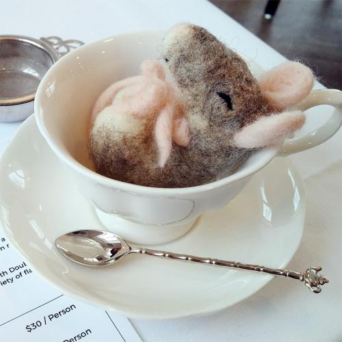 Sleepy Mouse in Tea Cup