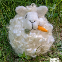 Sheep_Carrot_face_outside